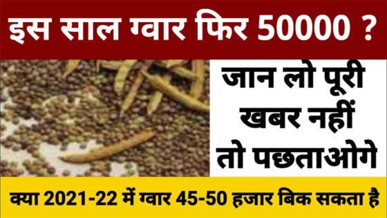 Gwar Ka Bhav Today 2021 - ग्वार के ताजा भाव सभी मंडियों के