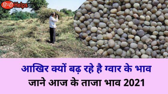 gwar ke taja bhav 2021